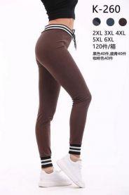 Spodnie damskie (2XL-6XL/16zt)