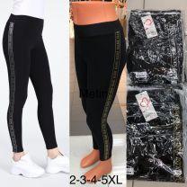 Spodnie Legginsy damskie (2XL-5XL/12szt)
